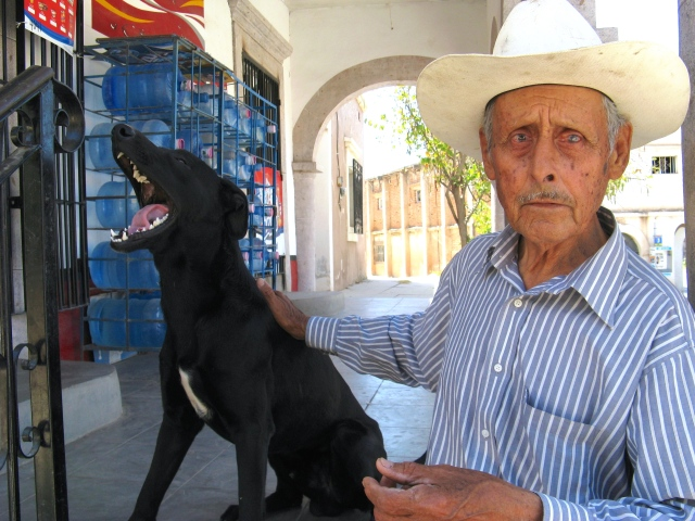 Diablo is the de factor seeing-eye dog for Rosario Morales, a virtually blind man who lives in Barrio Esmeralda.  We are old friends with both of them. Diablo and Rosario pass by our house almost everyday. By every measure -- his rotten teeth, wasting body, rheumy eyes -- Diablo is a dead dog. But he has some inner life force. So far, every year when we return to Alamos, Diablo and Rosario are here. Some day, one or both of them will be gone.