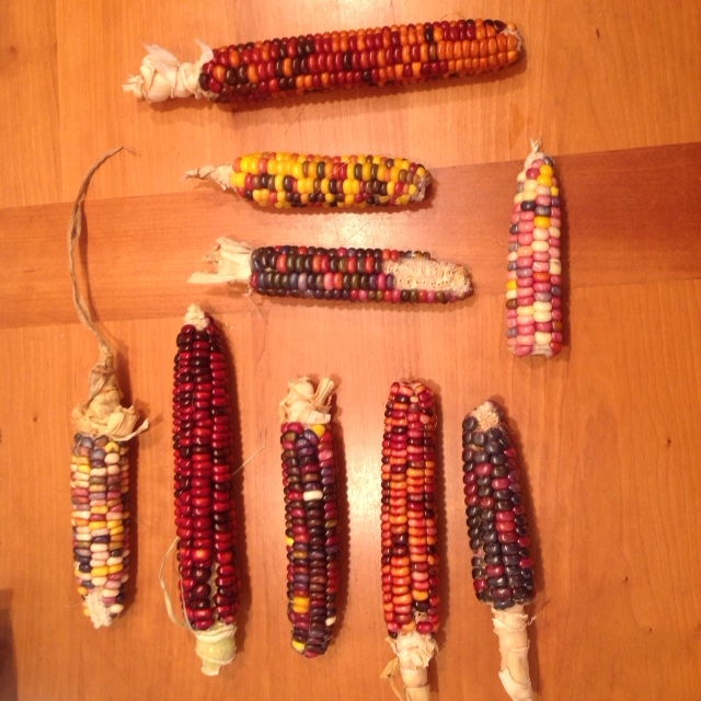Painted Mountain Corn, I Ching.